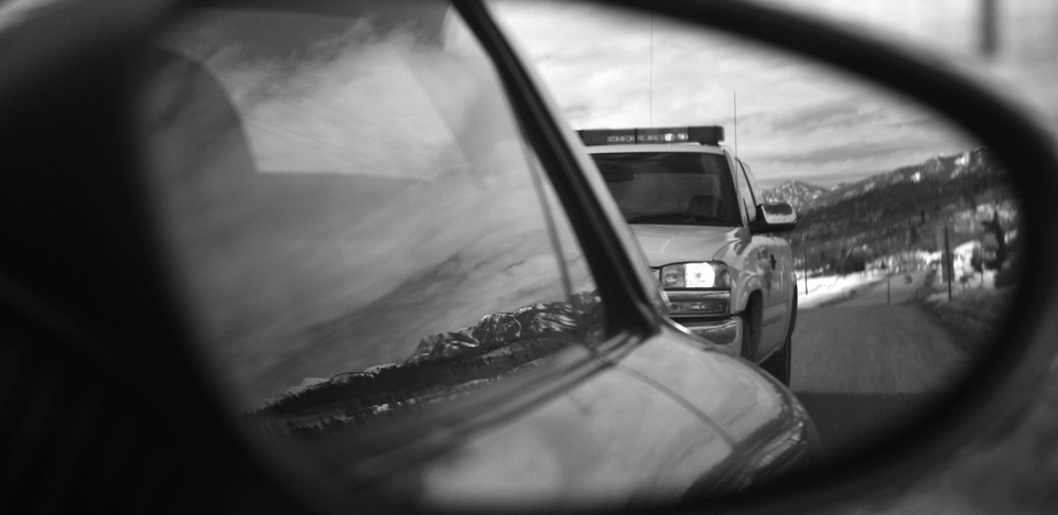 Motor vehicle driving record reports prevent losses for Motor vehicle records check
